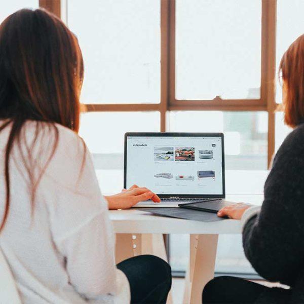 Marketing-Mix Básico en Internet y Gestión Online de Clientes (COMM088PO)