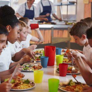 Salud, Nutrición y Dietética (SANP034PO)